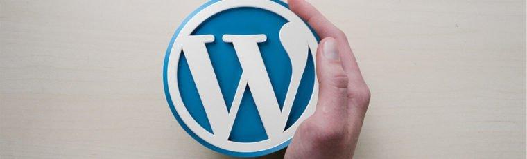 ماذا تحتاج لإطلاق مدونتك الخاصة على الوورد بريس؟